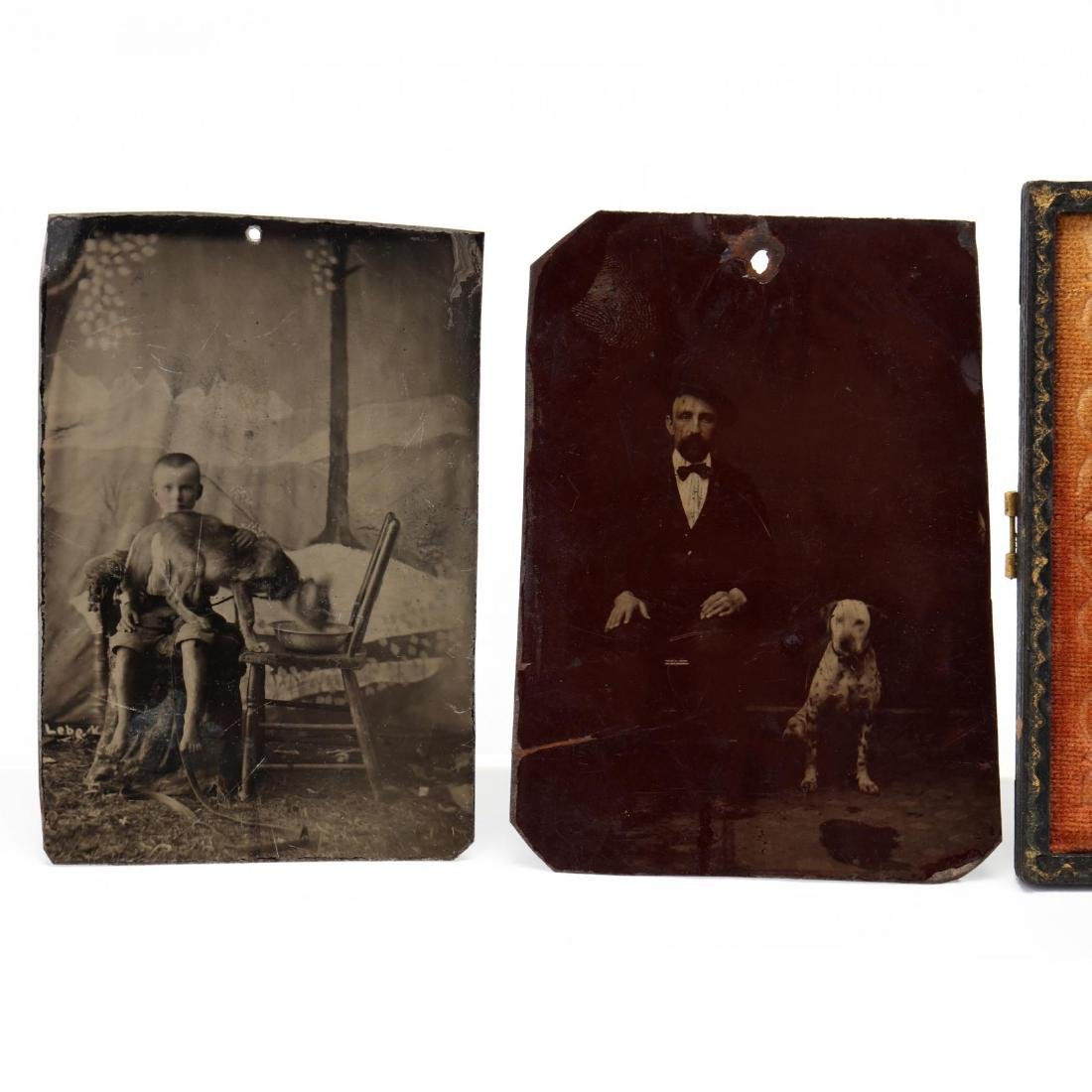 Five Antique Photographs of People With Dogs - 3