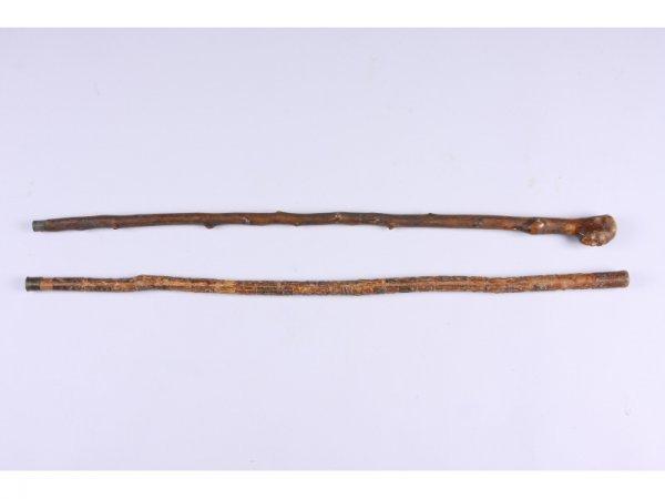 1016: Two Antique Folk Art Canes,