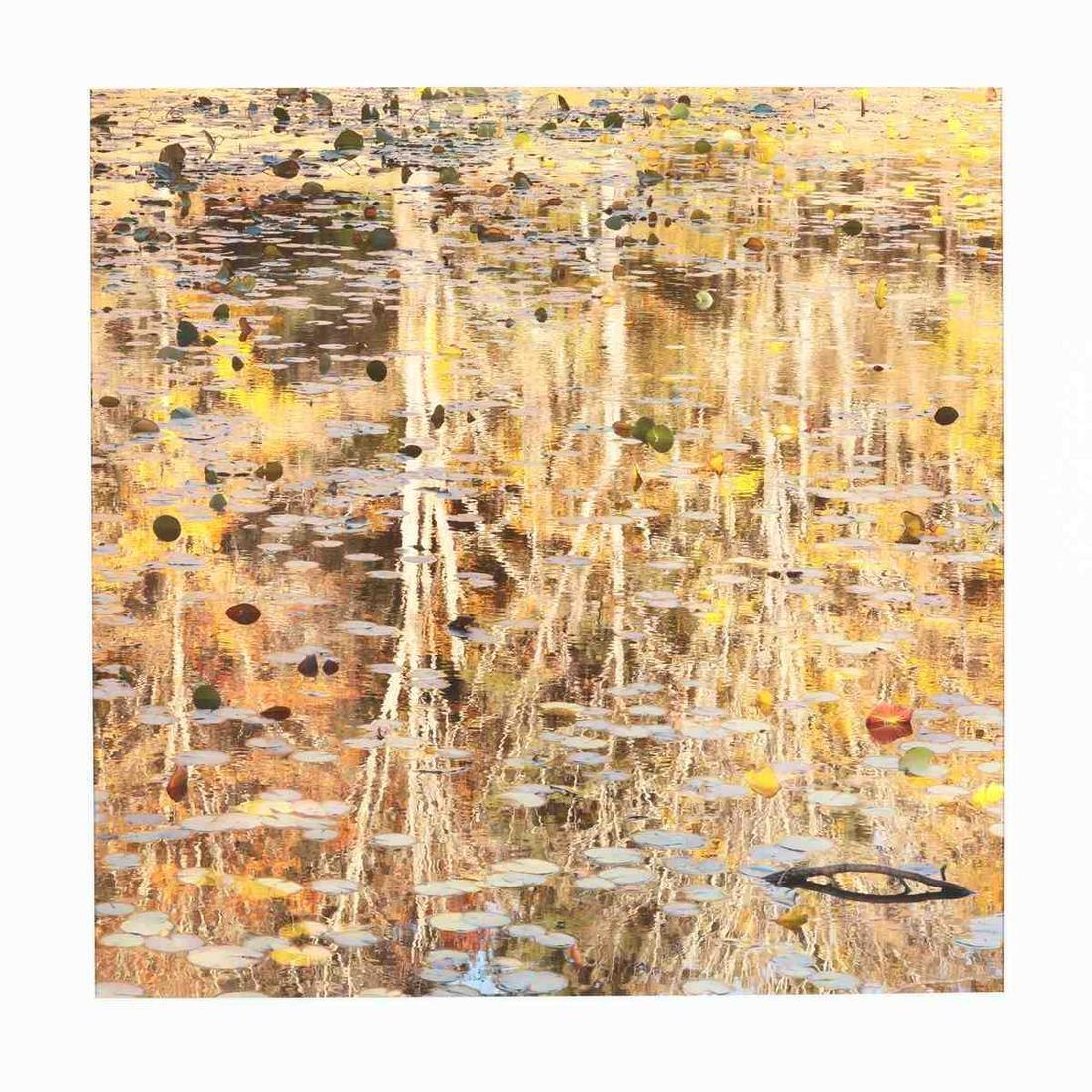 Eric Saunders (NC),  Autumn Reflection V