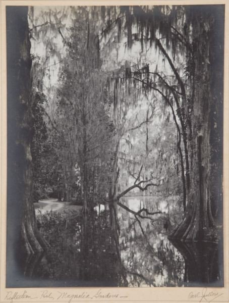 252: Carl V. Julien (SC, b. 1897), Magnolia Gardens
