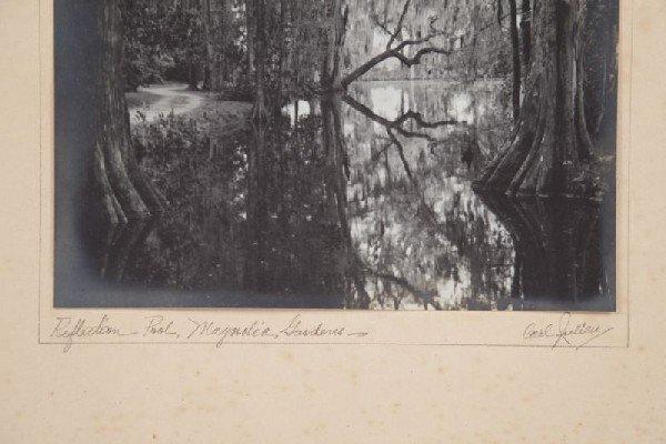 252: Carl V. Julien (SC, b. 1897), Magnolia Gardens - 2