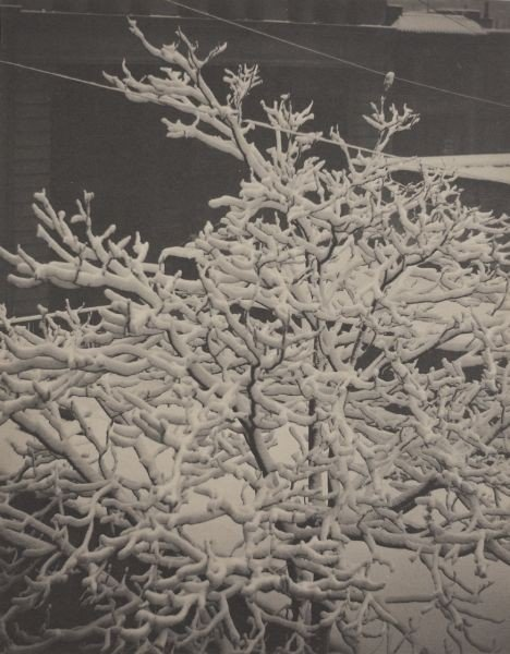 48: Alfred Stieglitz (Am, 1864-1946), View from Studio