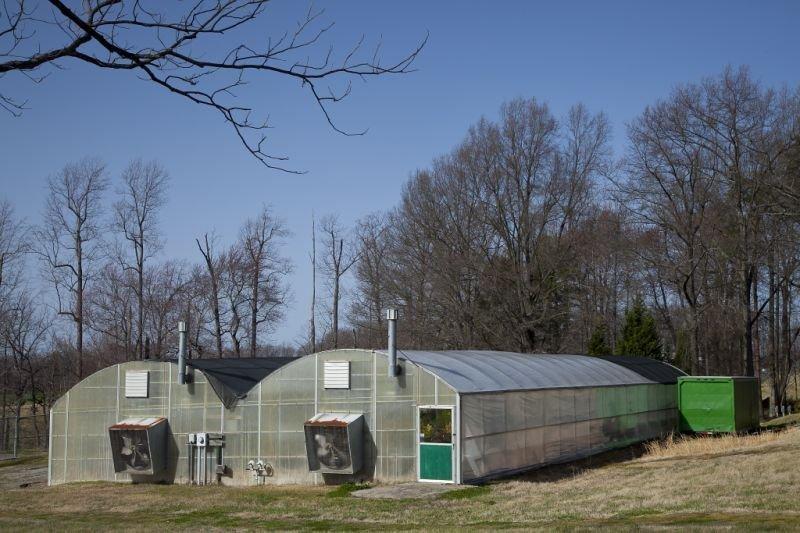 602: 1989 Stuppy Greenhouse