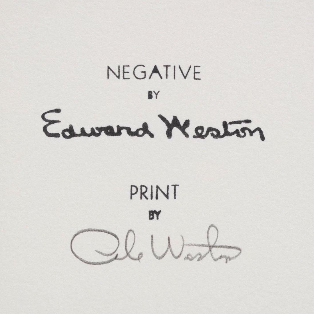 Edward Weston (American, 1886-1958),  China Cove, Point - 3