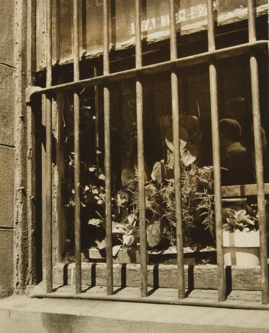 "SAM MAHL VINTAGE PHOTO "" WINDOWS WITH BARS "" CIRCA 1959"