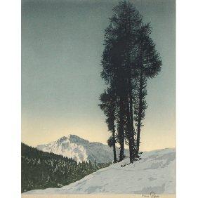 "Hans Figura ""Larchen"" Original Etching OnSilk Print"