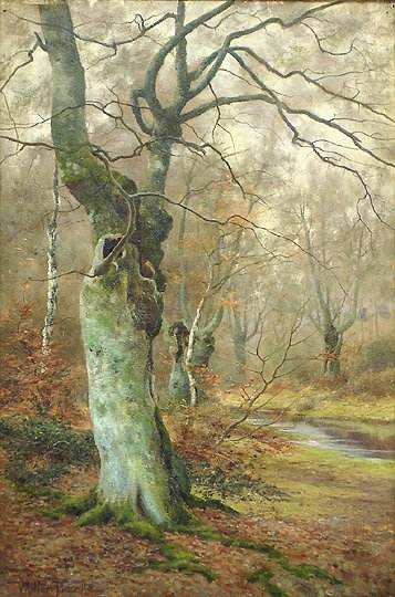 77: Walter Boodle 1859-1914 Autumn Forest Oil Painting