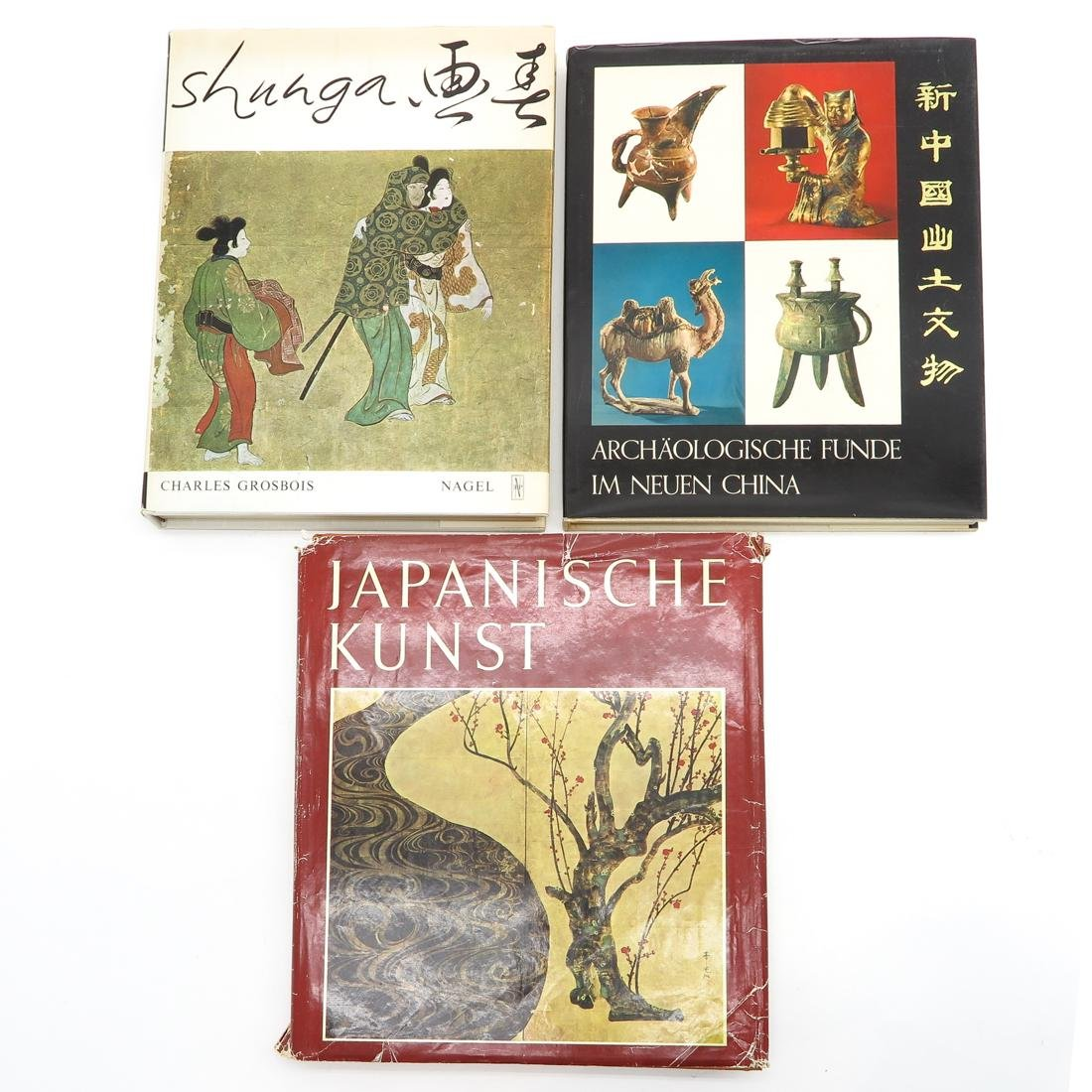 Lot of 9 Diverse Asian Subject Books - 4