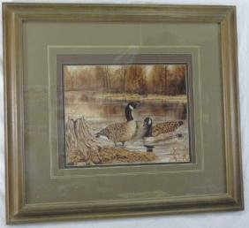 Vintage Framed Print of Mallard / Ducks in Pond