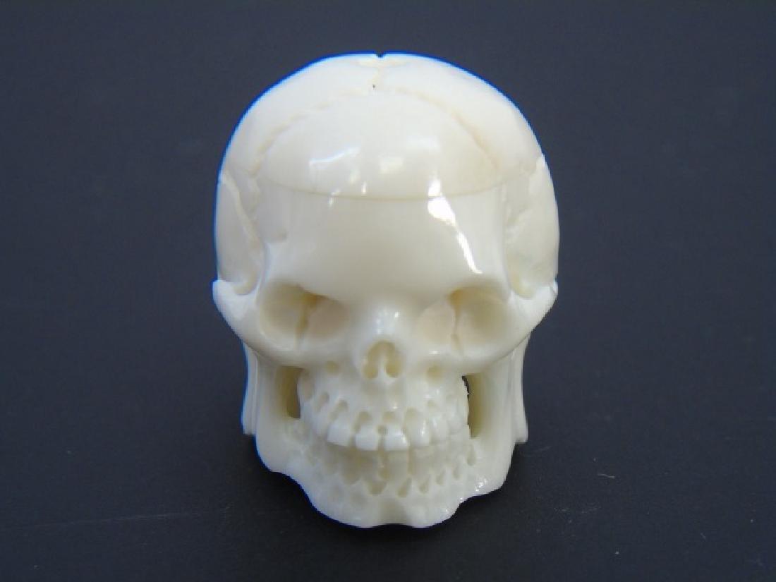Carved Bone Momento Mori Human Skull Pendant
