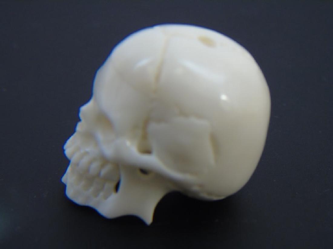 Carved Bone Momento Mori Human Skull Pendant - 3