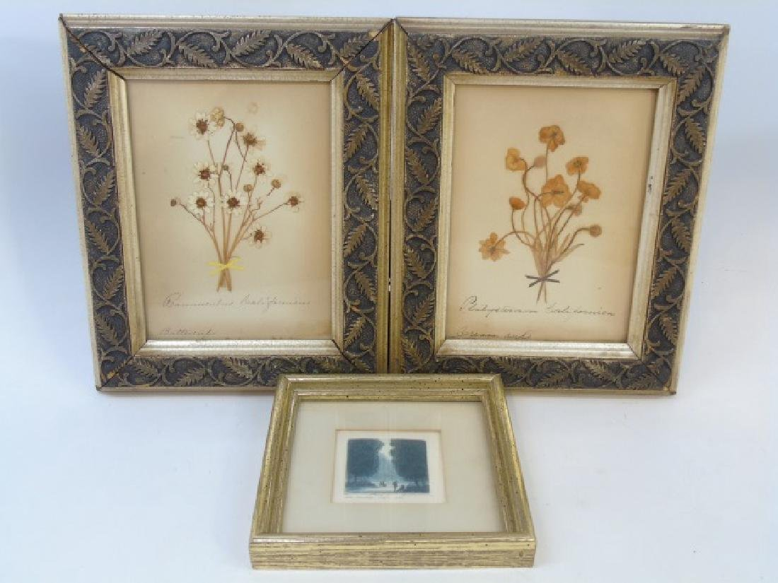 Pair Antique Botanical Studies & Vintage Engraving