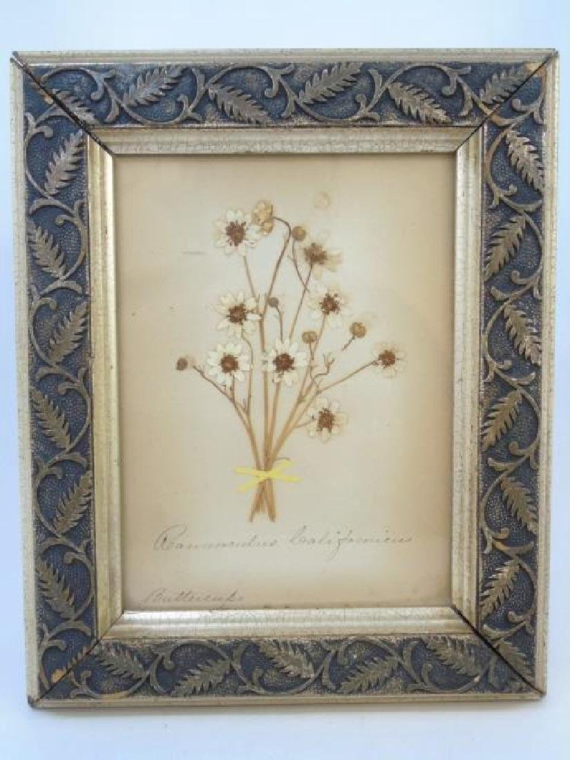 Pair Antique Botanical Studies & Vintage Engraving - 3