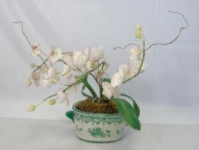 Contemporary Decorative Orchid Porcelain Cache Pot