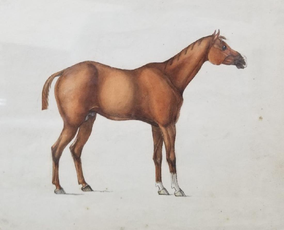 Antique 19th C Equestrian Watercolor Painting - 7