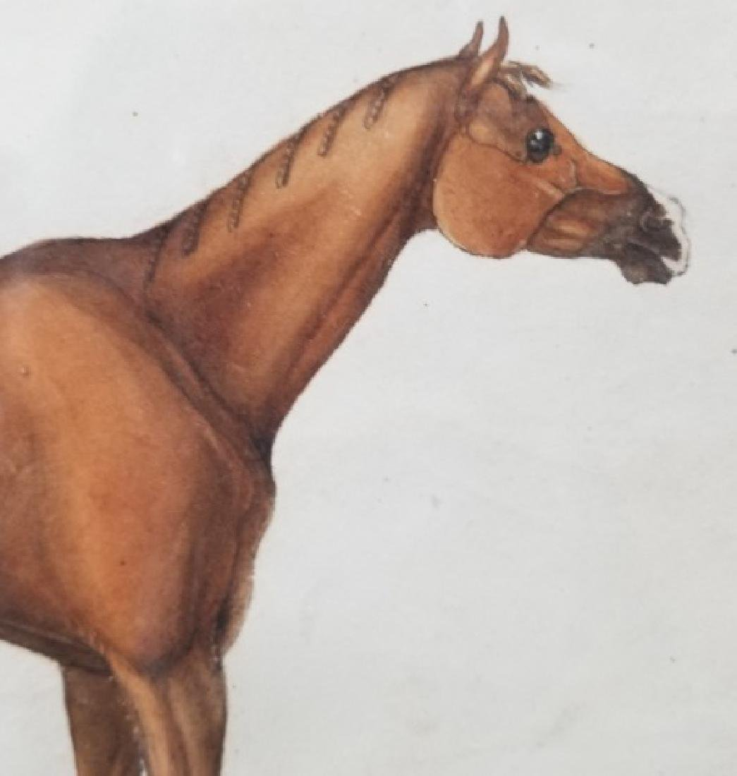 Antique 19th C Equestrian Watercolor Painting - 8