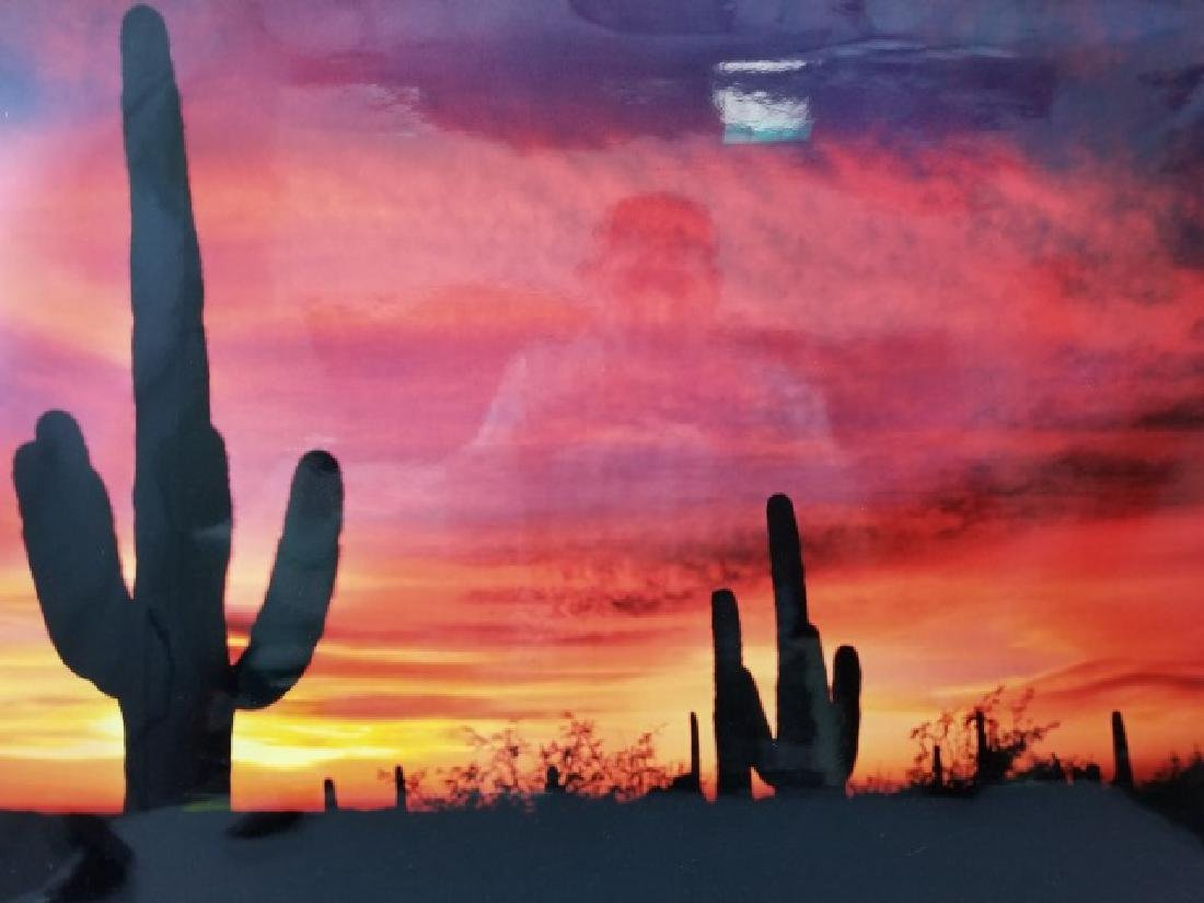 Framed Photo of American West Sunset w Cactus - 7