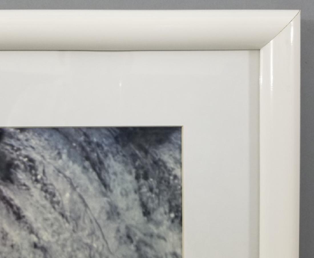 Pair of Framed Rod Kieft Photos of Bear & Moose - 6