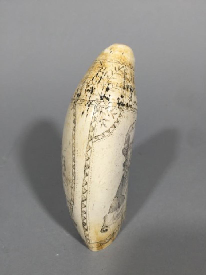 Admiral Howe / The Brunswick Faux Scrimshaw Tooth - 3