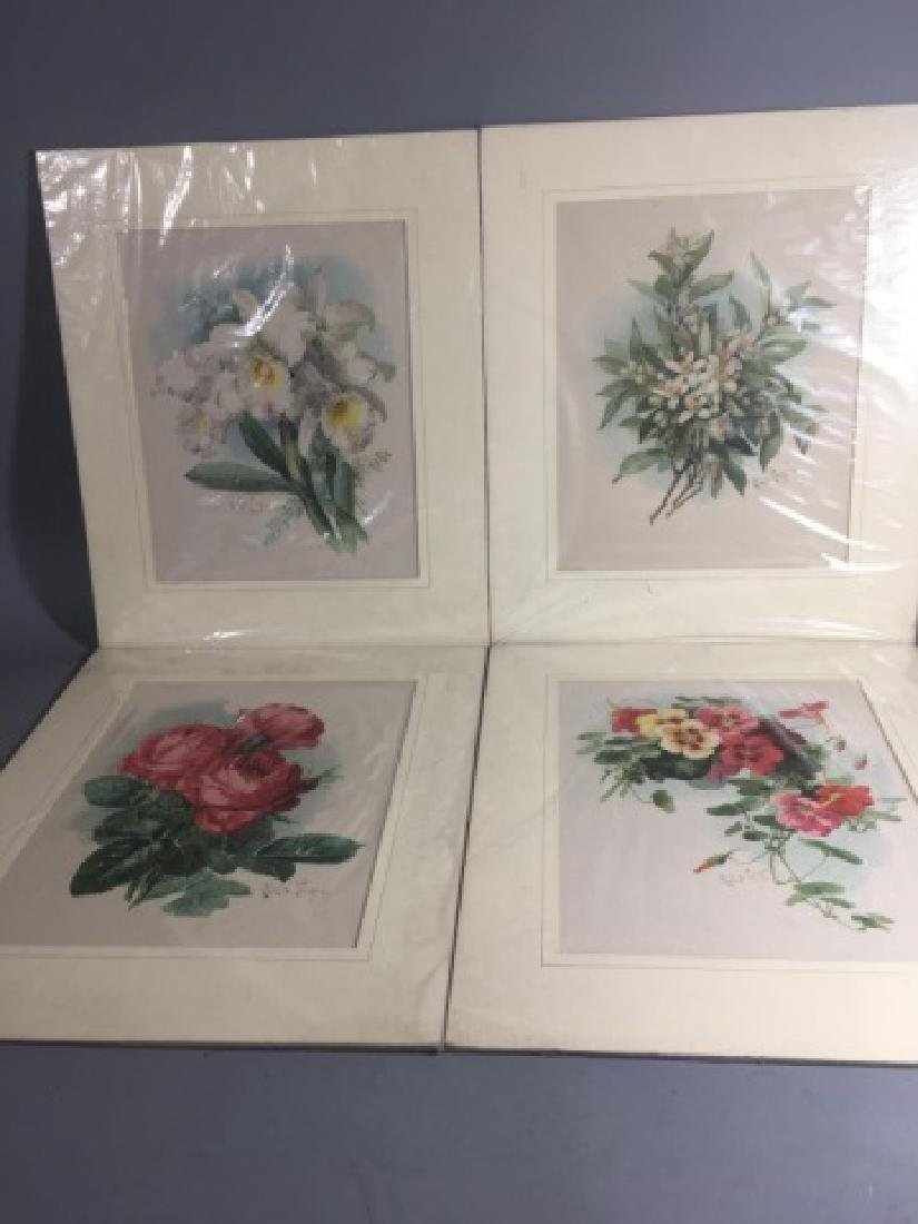 4 19C Botanical Chromolithographs Paul de Longpre - 2