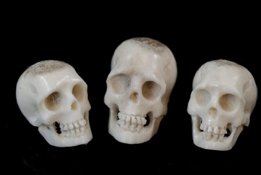 Three Hand Carved Horn Memento Mori Skulls
