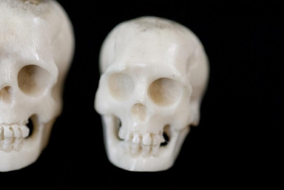 Three Hand Carved Horn Memento Mori Skulls - 2