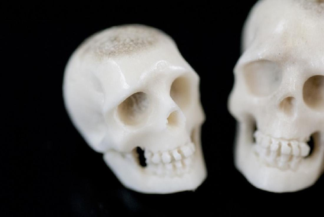 Three Hand Carved Horn Memento Mori Skulls - 4