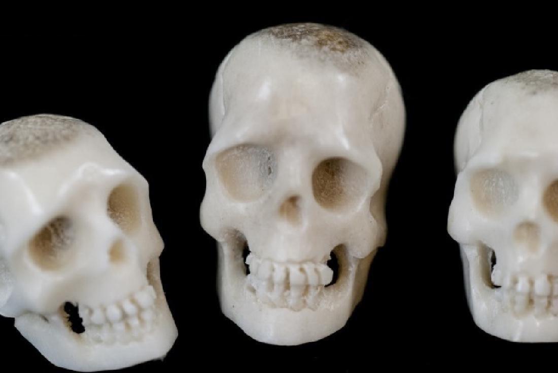 Three Hand Carved Horn Memento Mori Skulls - 5