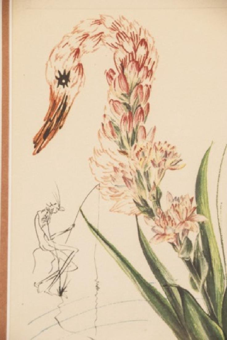 Salvador Dali Water Hibiscus & Swan Lithograph - 2