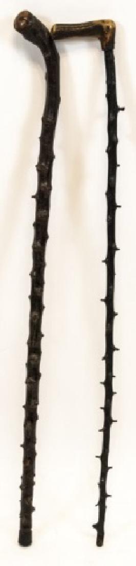 Two Blackthorn Shillelagh Canes / Walking Sticks - 5