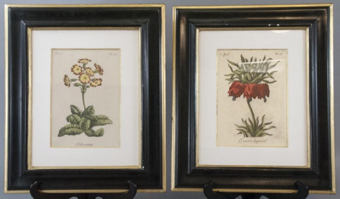 Pair Of Framed Vintage Flower Paintings