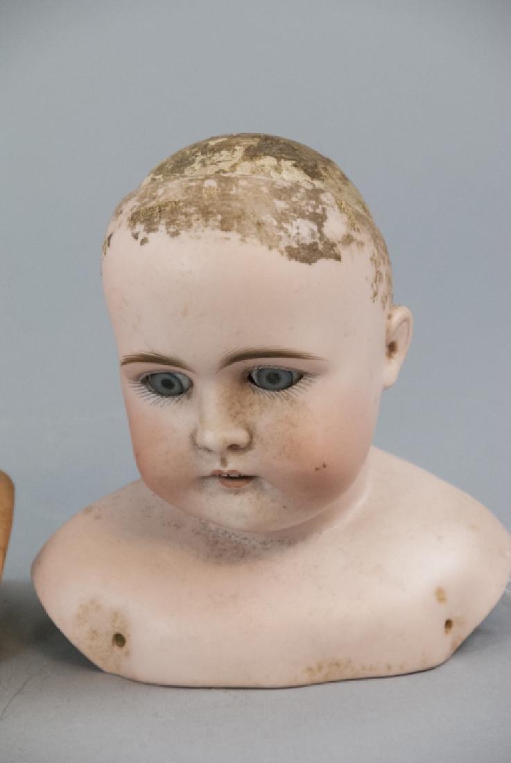 Three Antique German Shoulder w Head Dolls - 4