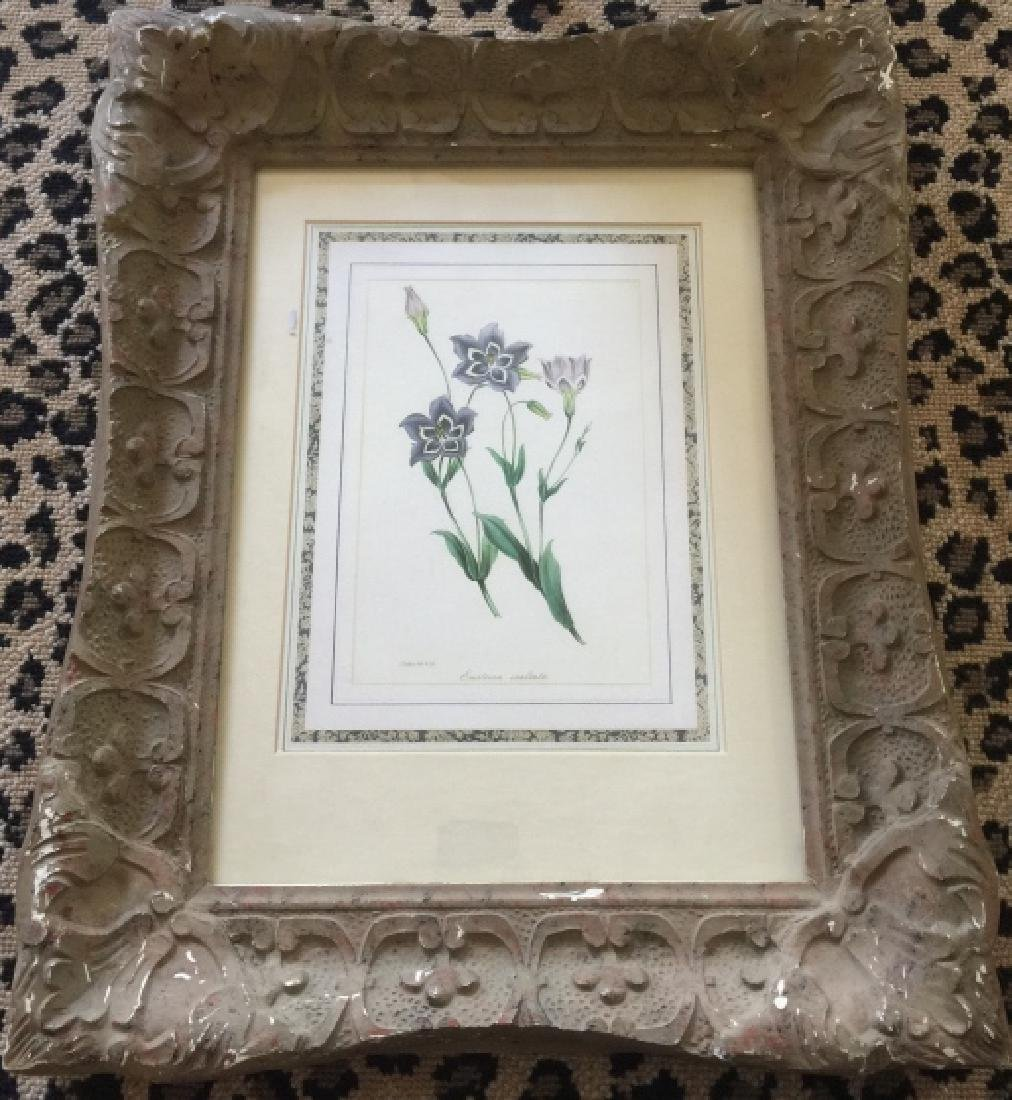 Floral Botanical Print in French Style Frame