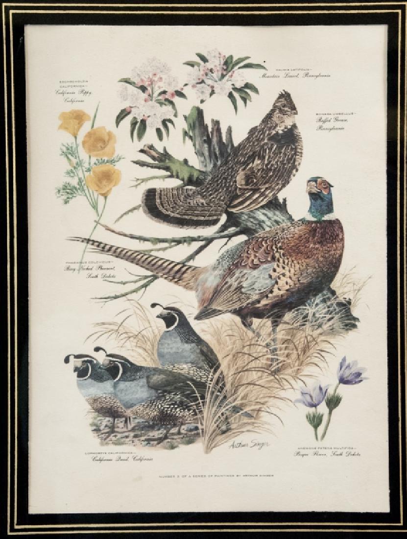 Vintage Framed Lithography Print Of Game Birds - 2