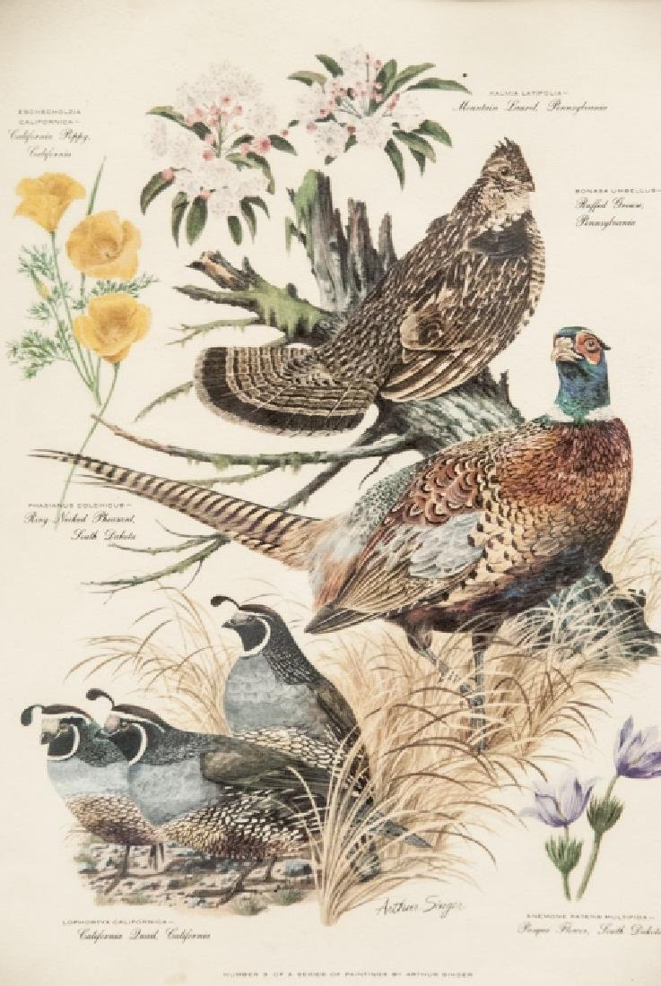 Vintage Framed Lithography Print Of Game Birds - 3