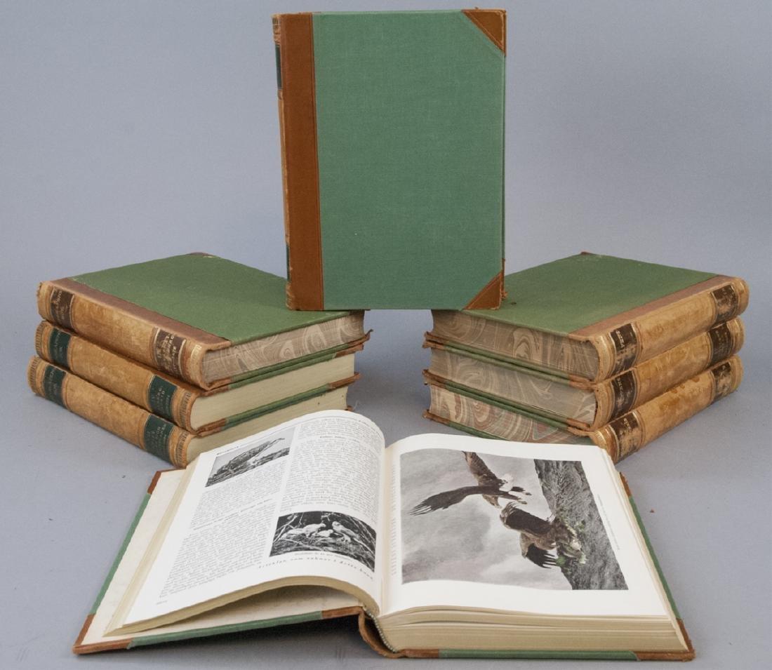 Antique 9 Piece Kunskapens Bok Book Set