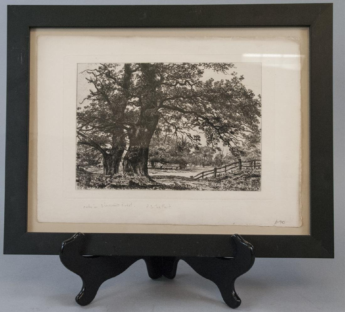 Signed Etching Sherwood Forest by R.S. Chattock