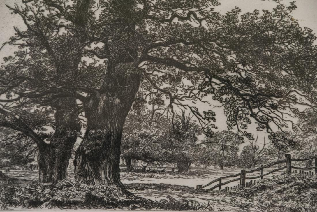 Signed Etching Sherwood Forest by R.S. Chattock - 5