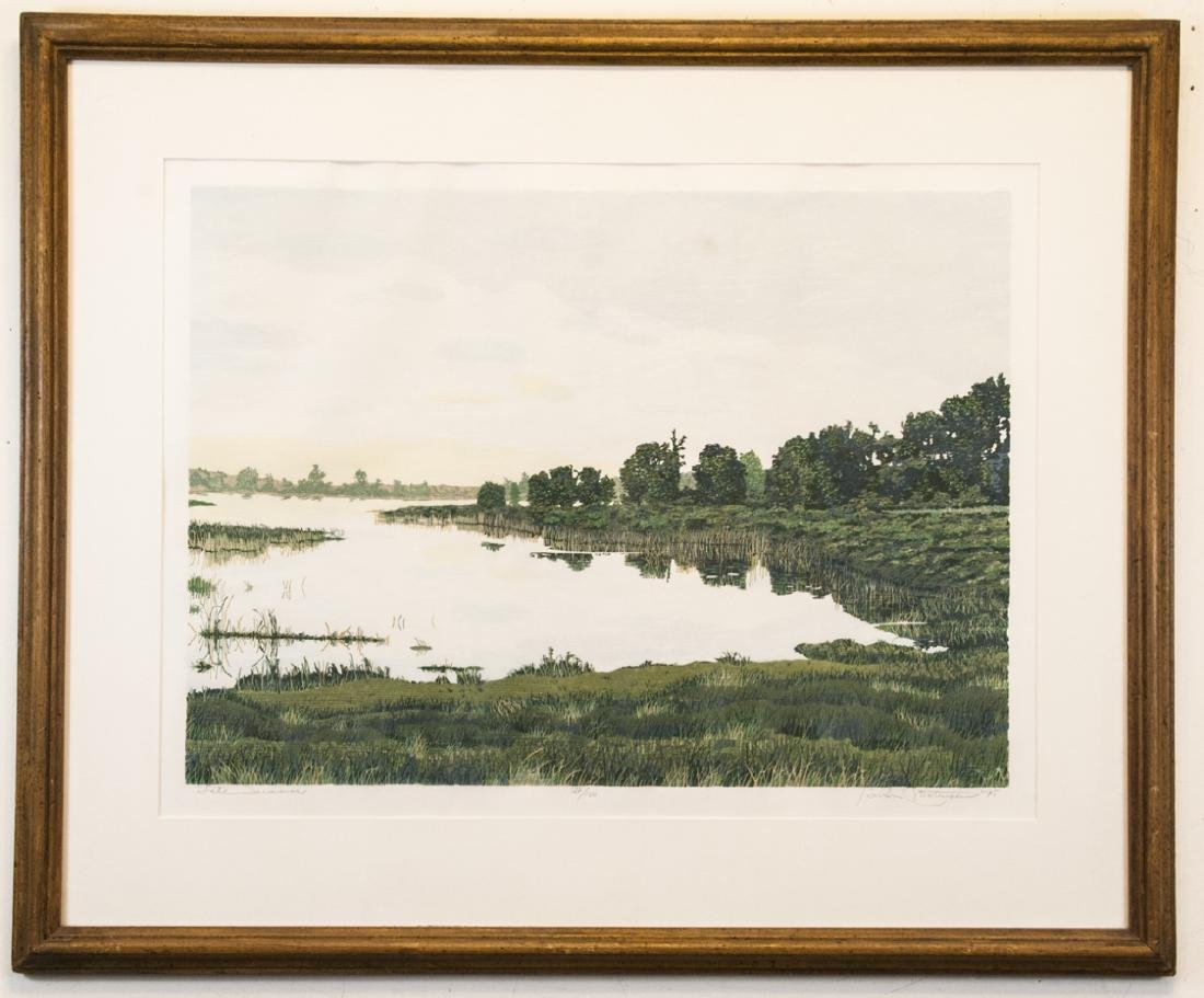 Professionally Framed Tidal Coastline Print