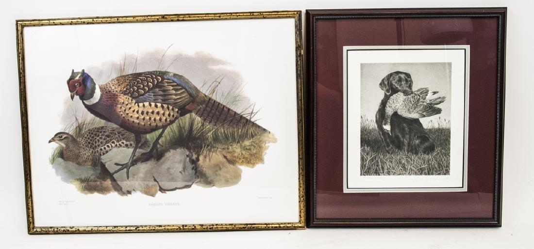Bruce S. Garrabrand & Phasianus Torquatus Prints