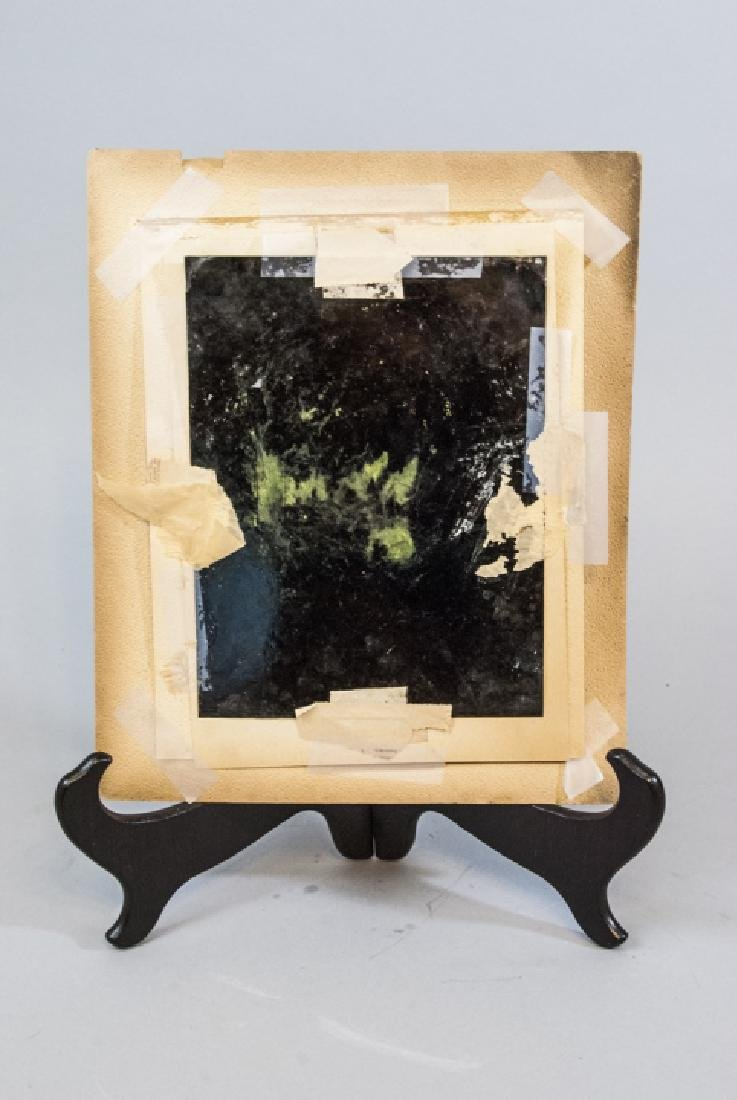 Large Antique 19th C Hand Painted Tin Type Photo - 6