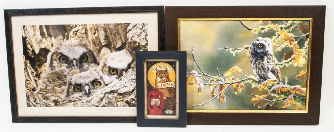 Three Pieces w Owls Including Framed Photograph