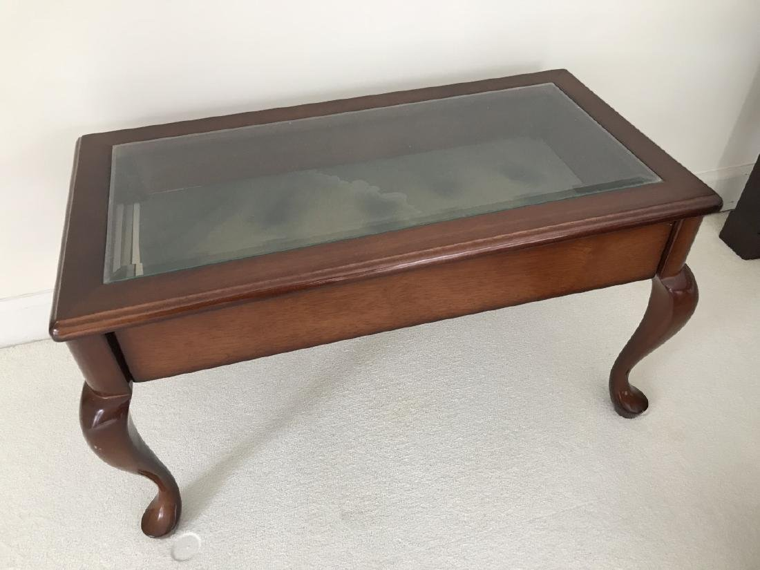 Contemporary Queen Anne Style Curio Coffee Table Apr 08 2018