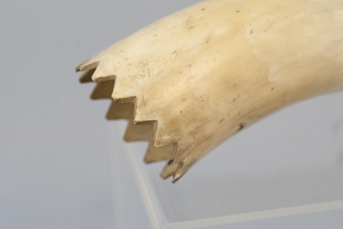 Antique Carved Powder Horn Flask - 4