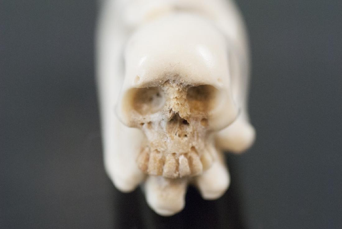 Hand Carved Horn Pendant - Hand Holding Skull - 2