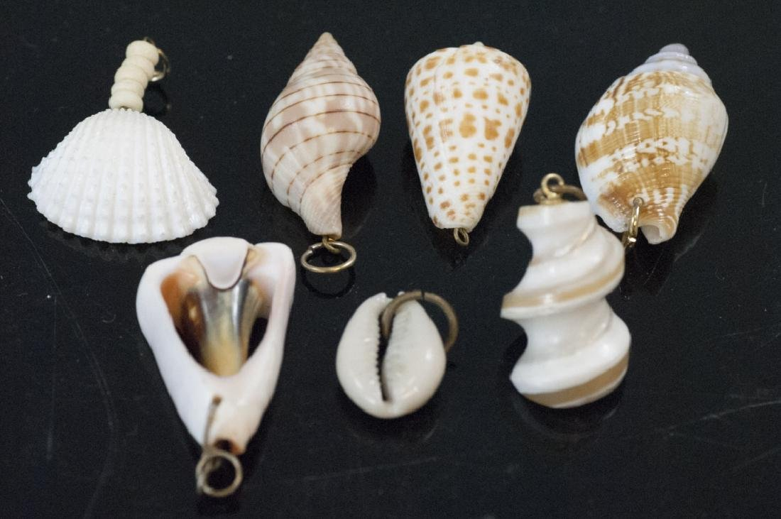 Group Natural Sea Shell Necklace Pendants Charms