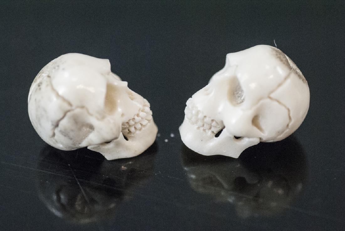 Pair of Memento Mori Carved Bone Human Skulls - 3