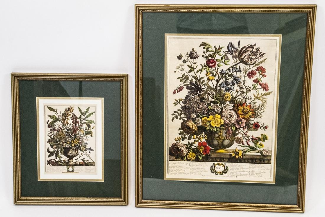 Two H. Fletcher Botanical Engraving Prints Framed