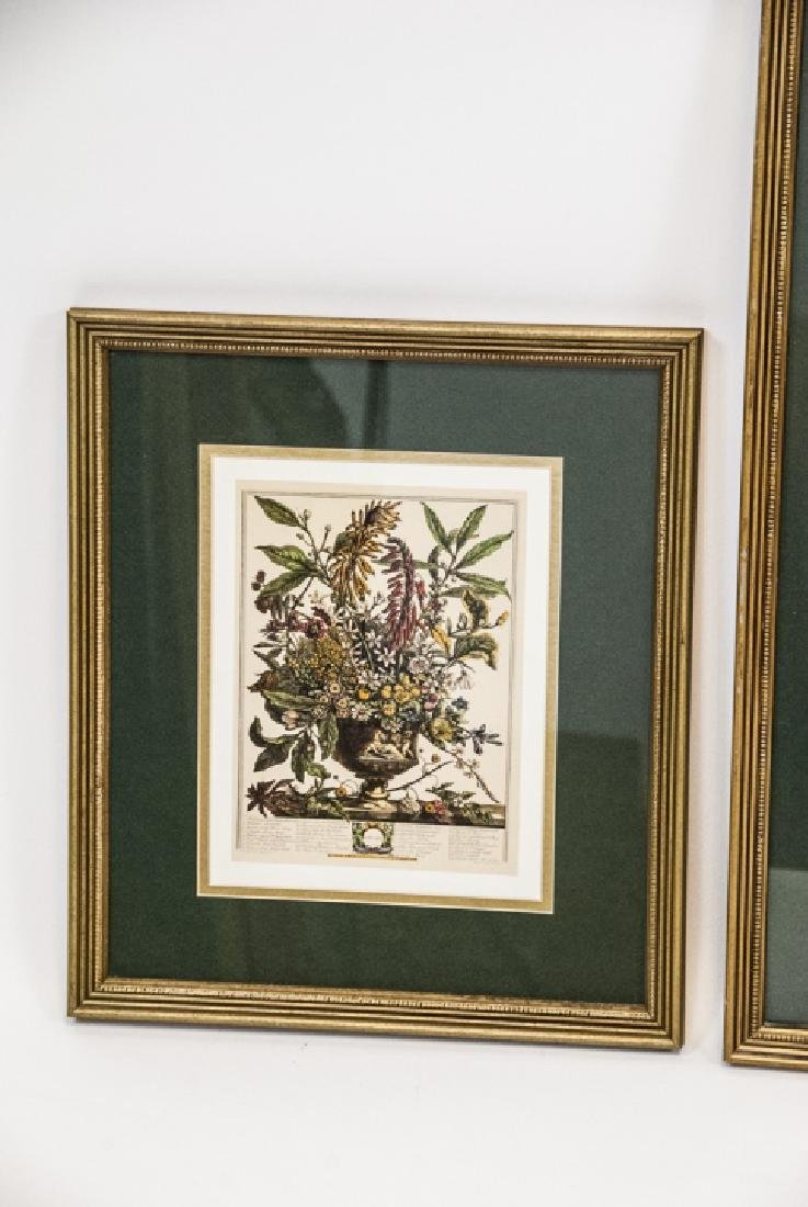Two H. Fletcher Botanical Engraving Prints Framed - 2