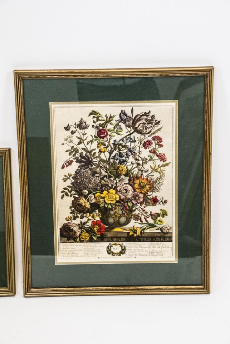 Two H. Fletcher Botanical Engraving Prints Framed - 4